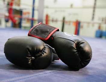 Soirée boxe Gennady Golovkin/Daniel Jacobs