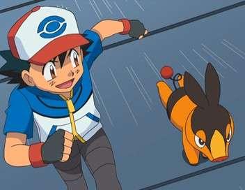 Pokémon : Noir & Blanc Danse avec les Couaneton !