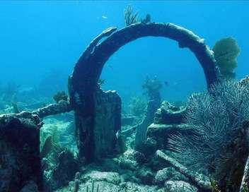 Épaves de récifs