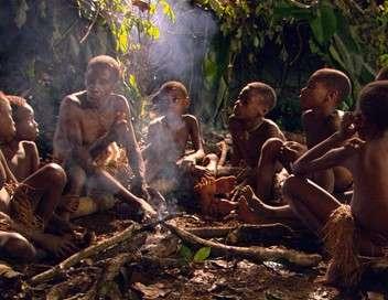 Dans la jungle avec les Pygmées
