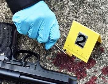 Crimes Crimes dans le bordelais