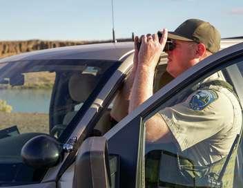 Rangers Patrol