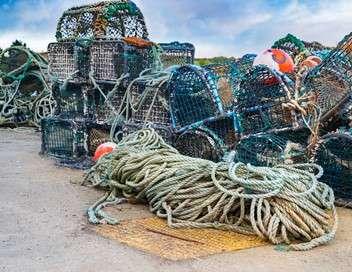 Gros plan Sur la pêche en haute mer