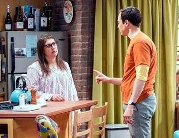 The Big Bang Theory Le test de compatibilité