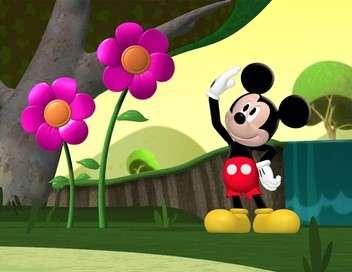 La maison de Mickey Un animal pour Daisy