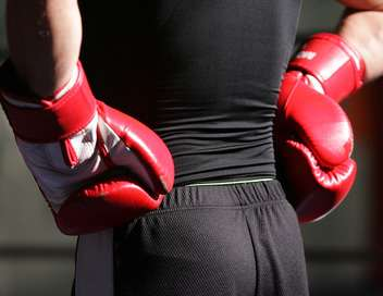 Boxe Floyd Mayweather Jr/Connor Mcgregor