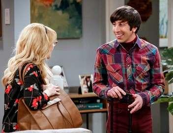 The Big Bang Theory Baby-sitting expérimental