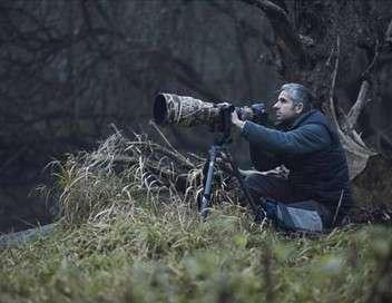Erwan Balança, la nature du photographe