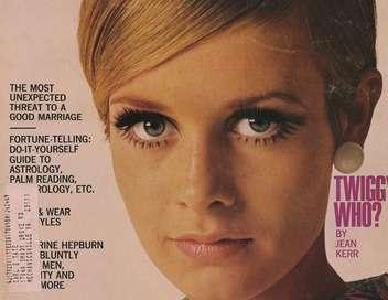 Twiggy, le visage des 60's