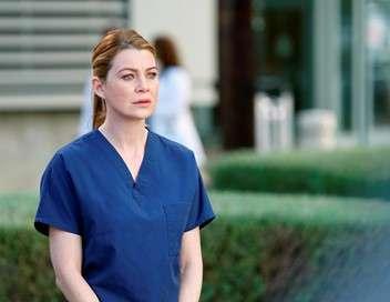 Grey's Anatomy Ceux qui restent, ceux qui partent