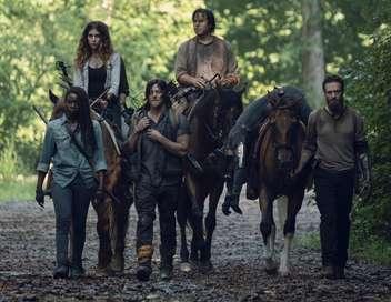 The Walking Dead Adaptation
