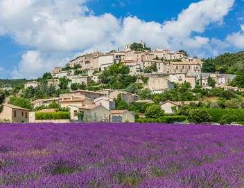 Des racines et des ailes Passion patrimoine : mon village en Provence