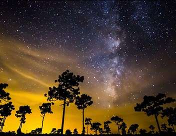 Sous les étoiles