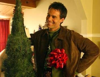 Un fiancé pour Noël