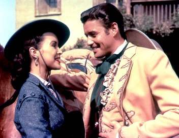 Zorro S'il vous plaît croyez-moi