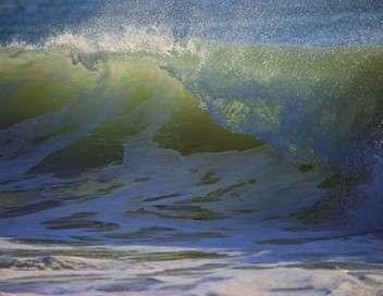Surf qui peut