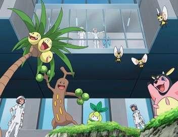 Pokémon : Soleil et Lune - Ultra-Légendes Un étonnant quatuor !