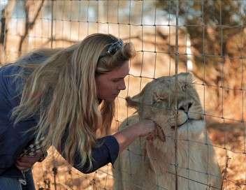 La reine des lions