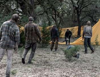 Fear the Walking Dead Toujours debout