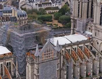 Des racines et des ailes Pour que vive Notre-Dame !
