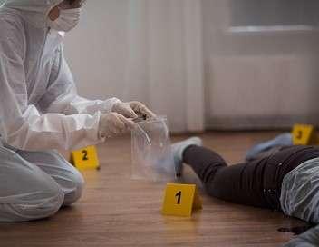 Crimes Spéciale familles disparues