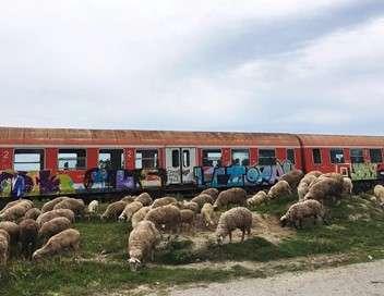 Albanie, voyage au bout des rails