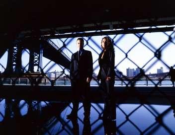 Les experts : Manhattan Meurtre à Central Park