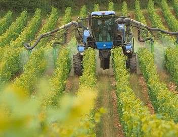 Pesticides, la plaie des champs