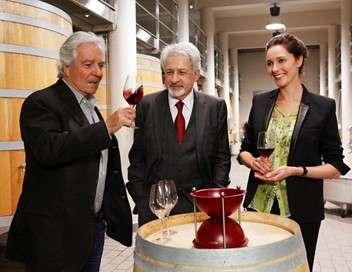 Le sang de la vigne Chaos dans le vin noir