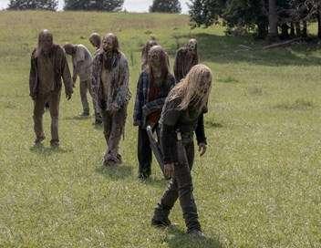 The Walking Dead Nous sommes la fin du monde