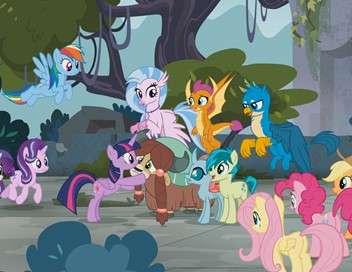 My Little Pony : les amies c'est magique Un silence de plomb