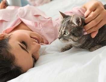 La vie secrète des chats Naturellement chat !