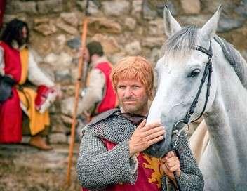 Richard Coeur de Lion : le roi pris au piège