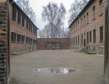 Les expérimentations médicales à Auschwitz