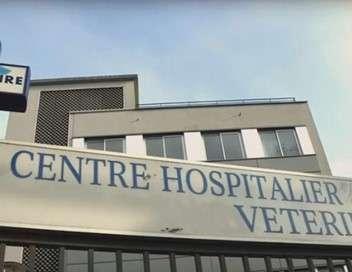 Enquête prioritaire Les urgences vétérinaires