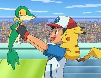 Pokémon : aventures à Unys et au-delà L'équipe ciel - Terre des combats en double !