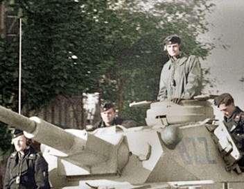 Das Reich, une division SS en France 6 juin 1944 - 8 mai 1945