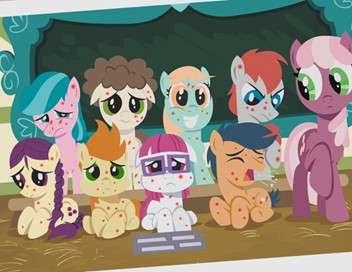 My Little Pony : les amies c'est magique La crinière n'est pas tout