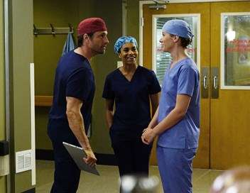 Grey's Anatomy Sur la sellette
