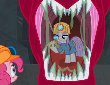 My Little Pony : les amies c'est magique Un lien hors du commun