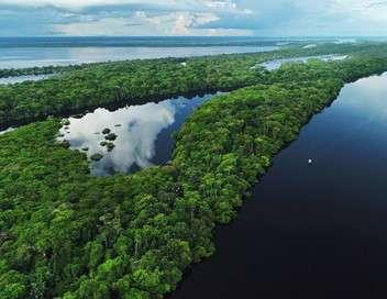 L'Amazonie, fleuve-océan