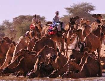 Ushuaïa nature Tchad - Espoir de vie