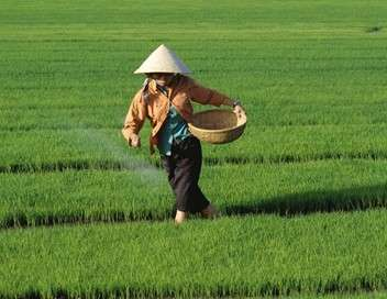 Hô-Chi-Minh-Ville, entre tradition et modernité