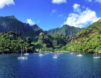 Polynésie, les protecteurs de la nature