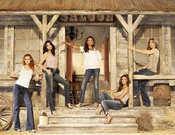 Desperate Housewives Joyeux Thanksgiving