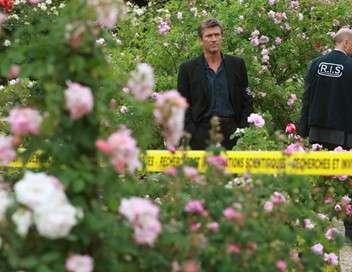 R.I.S. Police scientifique Les fleurs du mal