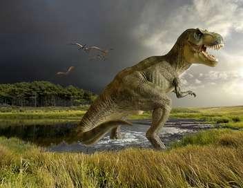 C'est pas sorcier Des dinosaures sous nos pieds