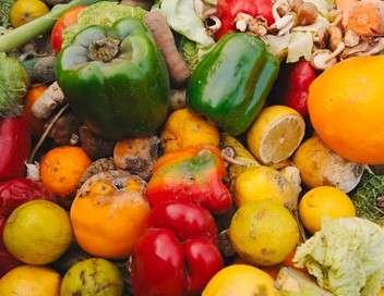 90' enquêtes Gaspillage alimentaire : à qui profite le gâchis ?