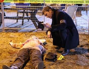 R.I.S. Police scientifique Coup de sang