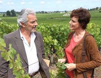Le sang de la vigne Retour à Nantes